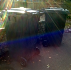 Two wheelie bins in the morning sunlight