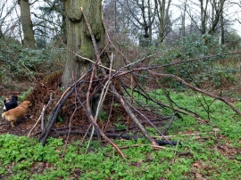 Temporary shelter made from roughly assembled sticks