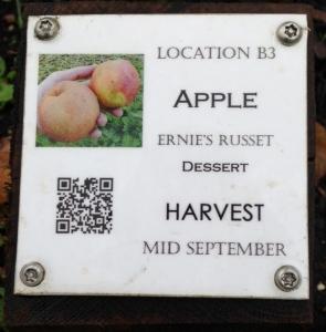 Identification plaque for Ernie's Russet